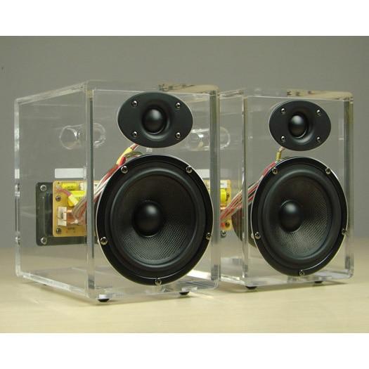 Acin Acrylic Cabinet Crystal Speaker for Modern House, Fiber Glass Woofer,  with Phase Plug