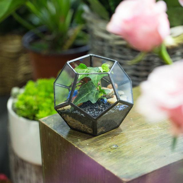 Garden Mini Terrarium Planter Glass Geometric Flower Pot Handmade