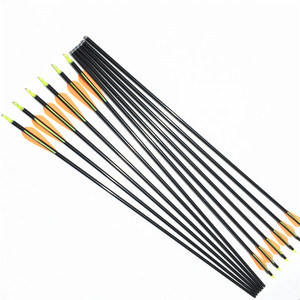 Image 2 - NEW 6/12/24pcs 32 inches  hot sale fiberglass arrows hunting arrow archery  with changeable tips
