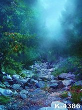 Vinyl Backdrops For Photography 5x7ft Night Forest Scenery Stone Path Photo Studio Backgrounds Printed fundo fotografico Muslin