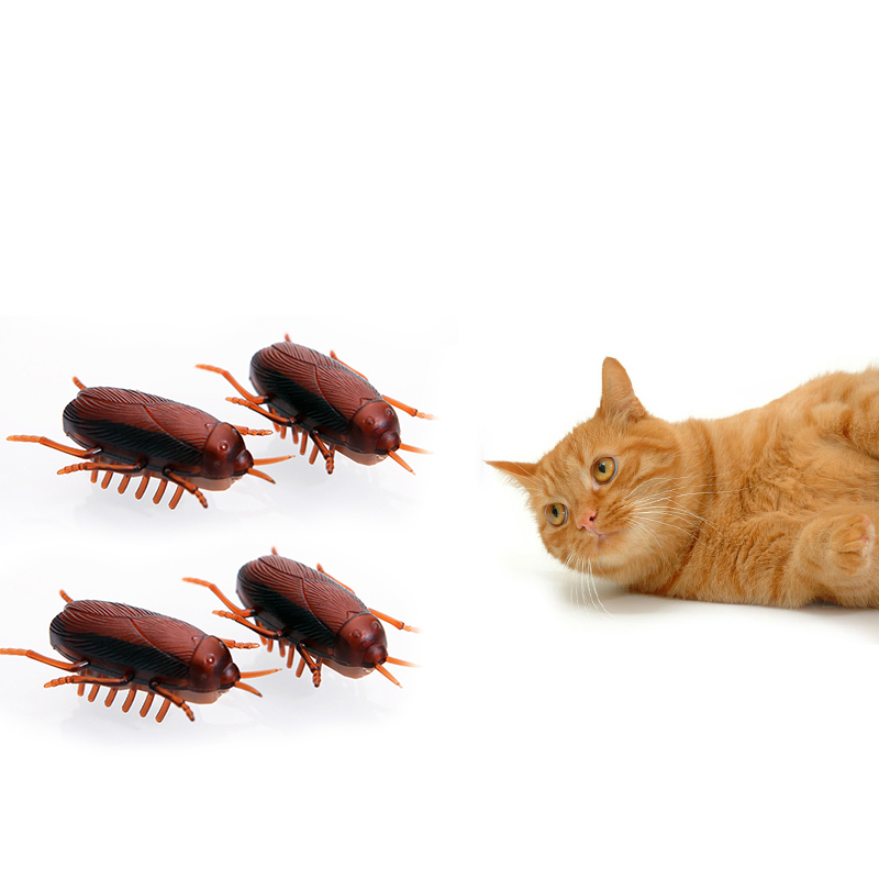 2019 Cat Toys Electric Cockroach Toy With Button Batteries Funny Pretend Play Toys For Kids