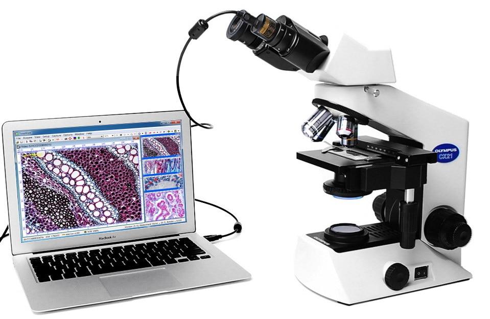 Usb mp okular kamera biologische stereo mikroskop bild erfassen