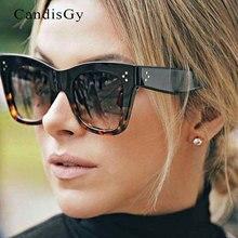 New Arrival Women Brand Designer Leopard Top Quality Cateye Sunglasses Lady Flat Lens Fashion Sun Glasses Clear Sun Glasses