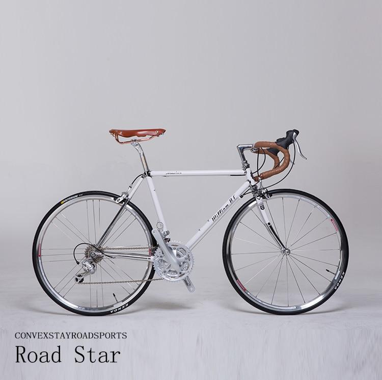 650C Road Bike Recuperation City Bike Reynolds520 Frame 27 Speed BICYCLE