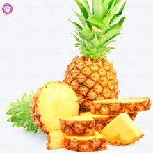 100pcs Mixed Ananas Comosus Pineapple Seeds Bonsai Plants Heirloom Fruit Tree Seeds Sweet Juicy Delicious DIY for Home Garden