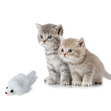 Scratch Resistant Squeaky Fake Toy Plush Tease Cat Mouse Fun Playing Interactive Game Pet