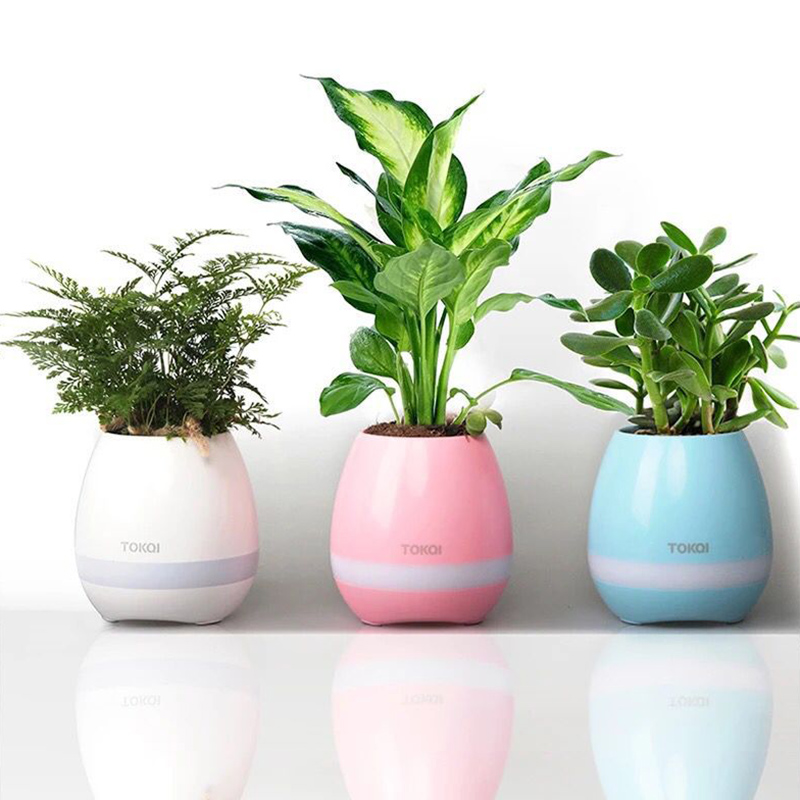 Original Smart Led Bluetooth Music Vase Speaker Real Plant Touch