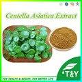 Venda quente extrato de Centella Asiatica Extrato 20:1 50g