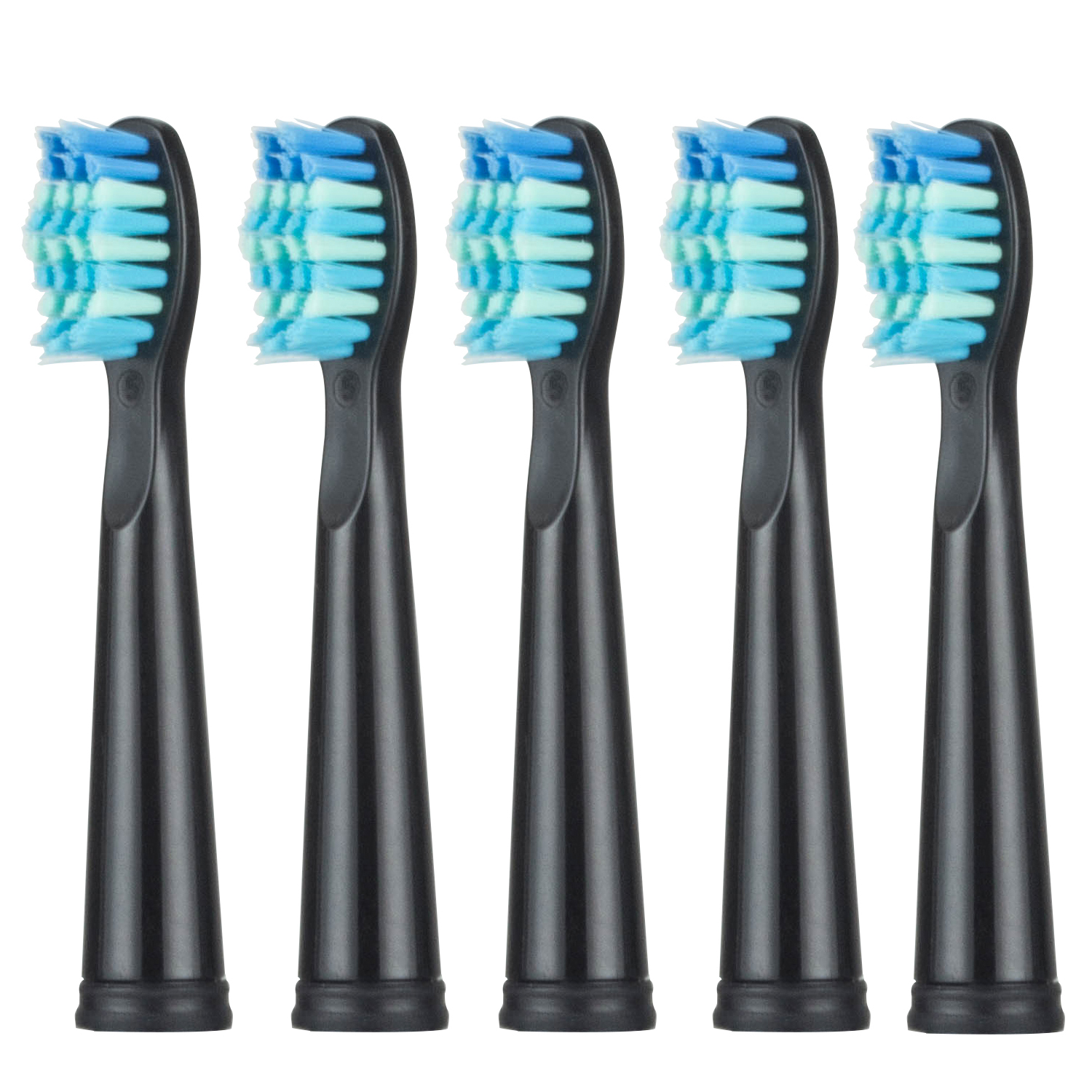 5pcs Replacement Toothbrush heads for Seago Electric Tooth Brush Brand Brush Heads for SG-507 SG-949 SG-917 truevis sg 300