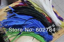 "EMS Free Shipping colorful rooster feathers 1000pcs/lot mix 5 color 12-14"" 30-35cm rooster tail feather for party performance"