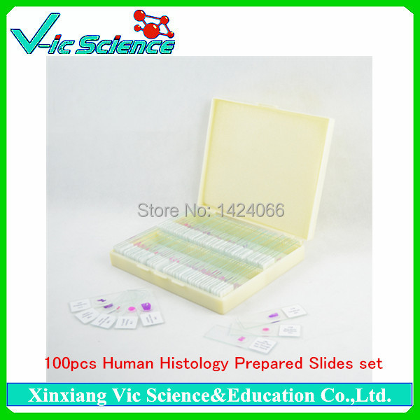 100pcs Human Histology Prepared Slides set 100% factory 100pcs parasitology prepared slides set