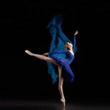 Professional Adult Latin Ballet Swan Lake Dance Royal Blue Elastic Waist Tutu Ballerina Three-Layer Mesh Tulle Mini Ball Skirt