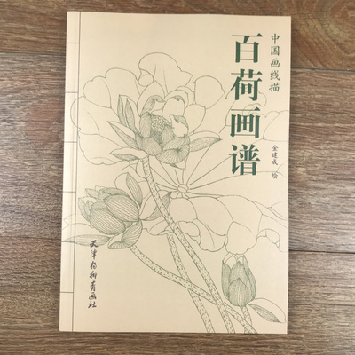 A Hundred Pictures Of Flower Lotus Tradition Chinese Bai Miao Line Drawing Painting Art Book 94 Page