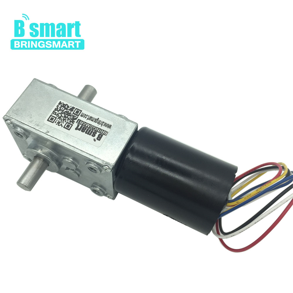 Bringsmart 12V Double Shaft BLDC Motor 24V Worm Gear Motor Self locking Gearbox Brake Motor High