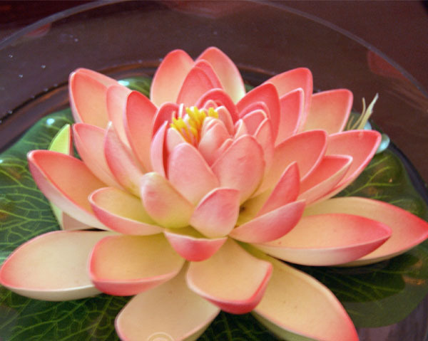 12pcslot Free Shipping Wholesale Fake Lotus Flowers Mix Colour