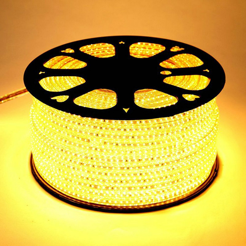 SMD 5050 AC220V LED Strip Flexibel Ljus 60led / m Vattentät led ljus - LED-belysning