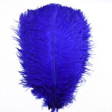 Wholesale cheap 10 Pcs/Lot 15-70CM Royal blue feathers ostrich plumes DIY Party Home Wedding for crafts  Decorations