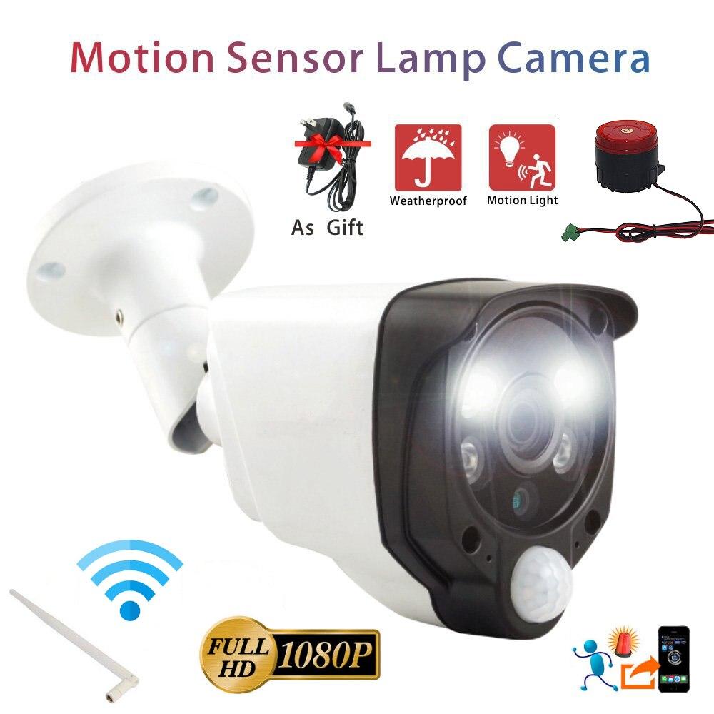PIR Alarm Camera