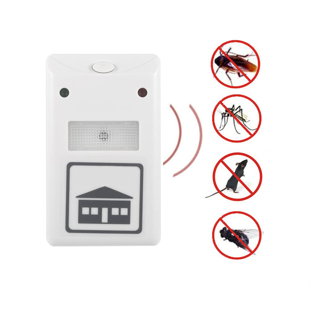 online get cheap cafards insectes. Black Bedroom Furniture Sets. Home Design Ideas