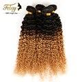 Cabelo Virgem malaio 3 pcs Cabelo Virgem Encaracolado Crespo Não Transformados Ombre Extensões de Cabelo Febay Produtos para Cabelo Mongolian Kinky Curly
