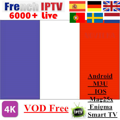IPTV Subscription 6400 Channels Arabic USA Canada Europe French Spain German UK Sweden Latino Stream Live Android Smart IPTV M3u