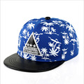 2016 New Fashion Casual Cotton Polyester Mesh Cap Hip Hop Hat Kids Triangular Cartoon Coconut Snapback Baseball Caps  Kids Cap