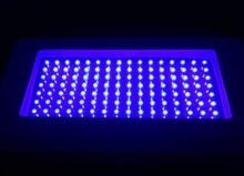 Crece la luz el envío libre Nuevo todo Azul 460NM 120 W LED Planta de La Lámpara Hidropónica Crece Luces