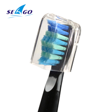 Sonic Electric Toothbrush 3 brush heads for Adult 5 Cleaning Modes USB Charging Power Tooth Brush Waterproof Portable Travel