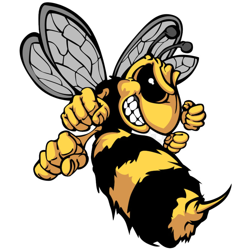 1pcs Lovely Angry Cartoon Hornets Colored Sticker For Skateboard Suitcase Refrigerator Motorcycle Decal Sticker Car Styling