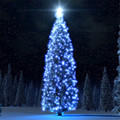 Holiday Lighting String  100 LED Outdoor Solar Powered String Light Christmas Party Lamp 17M u61207