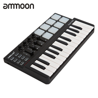 High Quality Panda Mini Portable Mini Keyboard And Drum Pad 25 Key USB MIDI Controller With