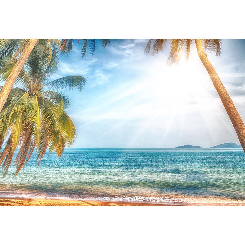 Exotic Beach: Tropical Beach Backdrop Photography Palm Trees Dreamlike