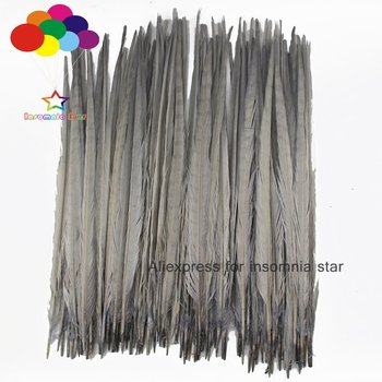 100 Pcs 45-50 cm Gray Dyed Natural Ringneck Pheasant Tail Feathers For Carnival plumas faisan colores view