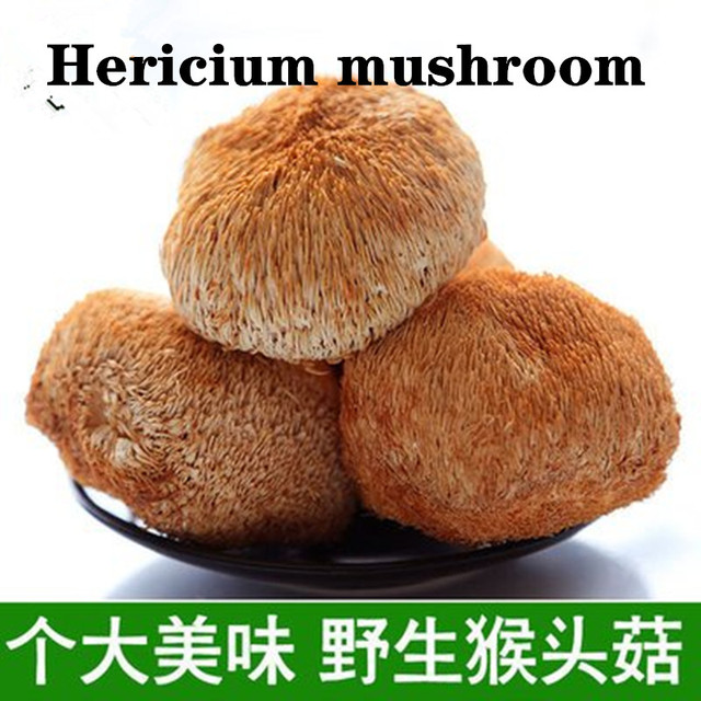 250g-1000g Pure wild dried mushrooms / Nourishing stomach / Farmers specialties / Increase appetite / Free shipping
