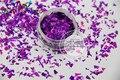 TCA800 Holográfico Mylar Hoja de Color Púrpura Al Azar Tamaño Copos de Corte para la decoración de uñas y otros decoración del arte DIY