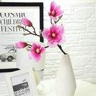 Magnolia flower Arti...