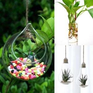 Image 2 - 1X ברור צמח תליית אגרטל תליית זכוכית פרחי צמח אגרטל חממה מיכל בית גן כדור Decors