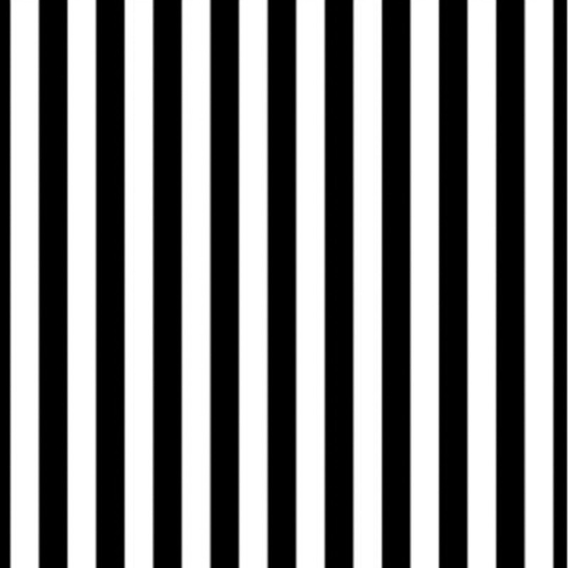 black and white stripes1jpg - photo #30