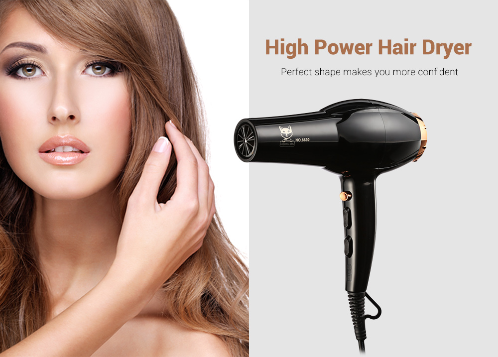 3000W Household Hair Dryer High Power Hot and Cold Wind