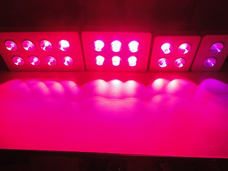 Newest Big Eyes 800W LED Grow Light Lamp Panel Indoor UFO Hydroponic System