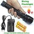 Alonefire DV20 CREE XML L2 LED Подводный diver 18650 Фонарик Факел Свет Лампы + 18650 Аккумуляторная батарея + зарядное устройство