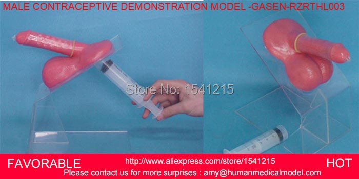 MALE CONTRACEPTION SIMULATOR SIMULATOR,MALE CONTRACEPTIVE PRACTICE MODEL,MALE CONTRACEPTIVE DEMONSTRATION MODEL -GASEN-RZRTHL003 peritoneal dialysis simulator model