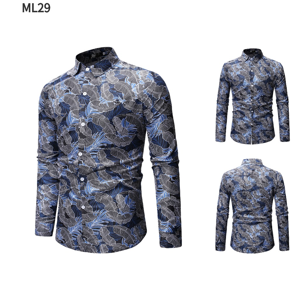 ML29-1