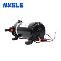 DP-160s ac 220v Water Pump High Pressure Diaphragm Pump 9.5m lift Submersible pumps For Chemical 160psi
