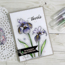 Naifumodo Clivia Flower Stamps and Dies for Scrapbooking Card Making Christmas Greetings Photo Craft Stamp Set with New Die