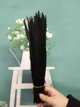 wholesale! 100pcs / natural black pheasant tail feathers 27-35 cm 11-14 inch feather clothing accessories