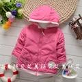 Nuevo 2015 niños del invierno internacional infantiles desgaste muchachos capa de las muchachas ropa algodón acolchado