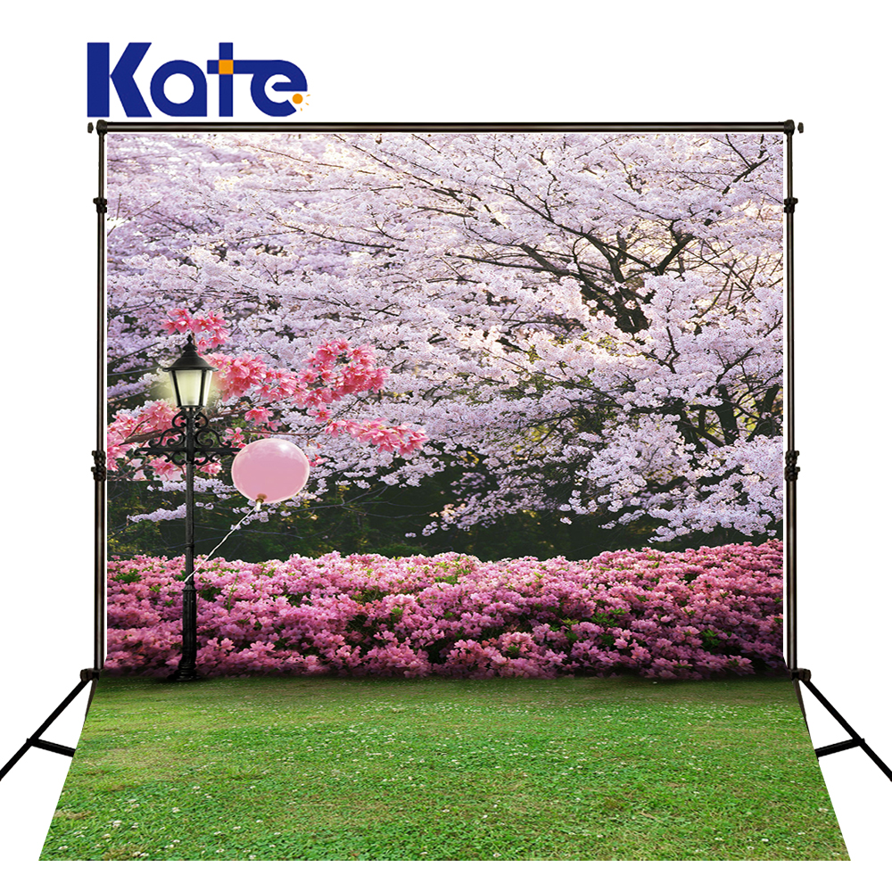 New Arrival Background Fundo Streetlights Meadow Blooms 300Cm*200Cm(About 10Ft*6.5Ft) Width Backgrounds Lk 2960 new arrival background fundo longbridge streetlights cubs 300cm 200cm about 10ft 6 5ft width backgrounds lk 2574