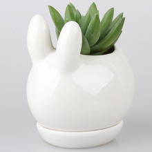 Kawaii Rabbit Ceramic Succulent Plant Flower Pot Flowerpot Planter Nursery Pots Cub Kitten Doggie Puppy Baby Tail Bell Tray