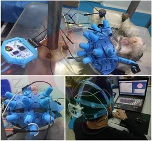 Image 2 - Новый электрод с крышкой EEG